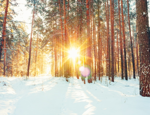 Great American Outdoors Act + How Snow Pros Support Sustainability