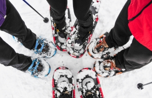A group of four people snow shoeing